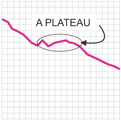 A weight loss plateau