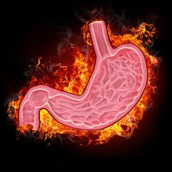 Digestion burns calories